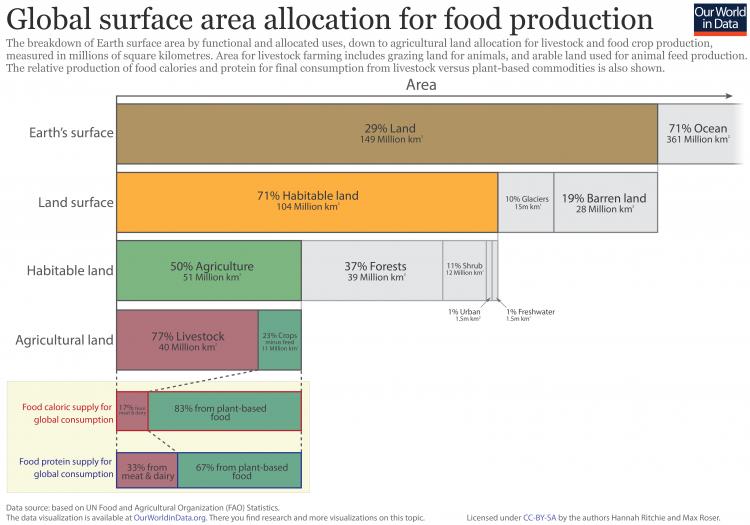zużycie ziemi w rolnictwie