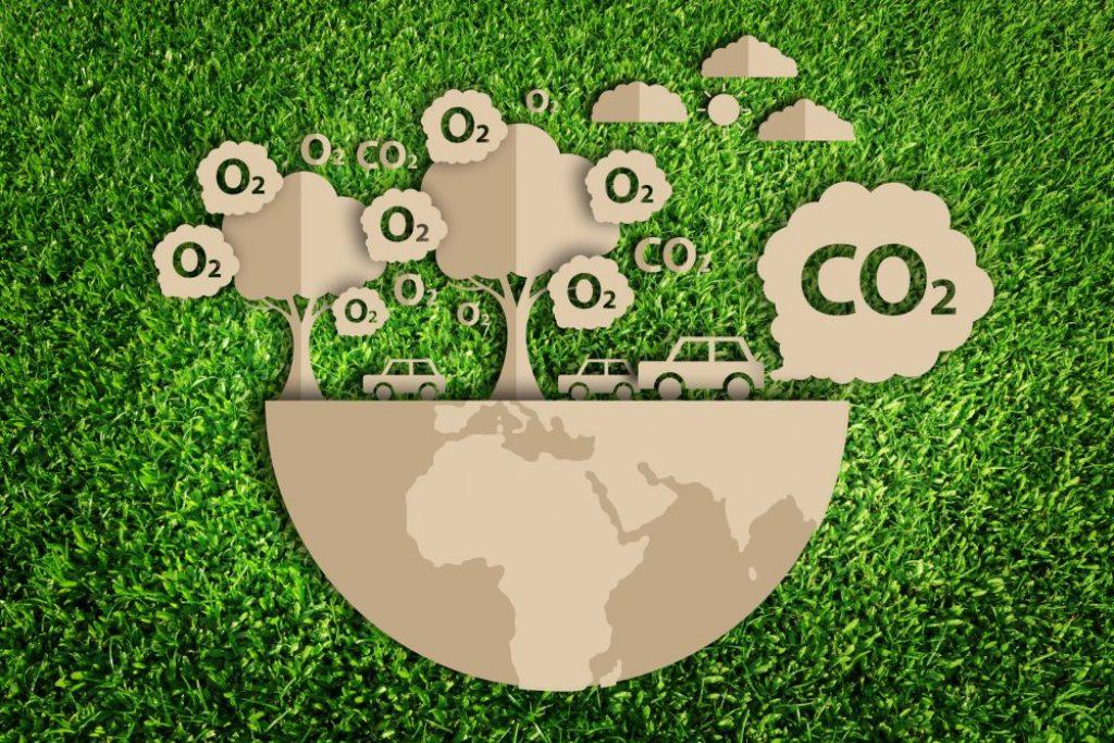 pochłanianie dwutlenku węgla