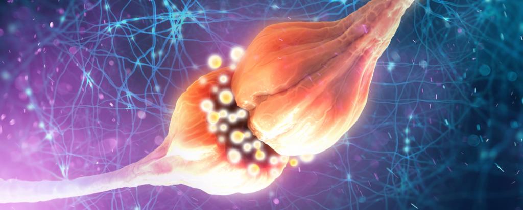 CBD a neuropatie
