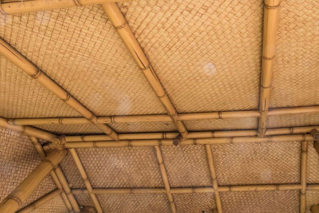 bambus zastosowania