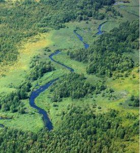 Dolina Rospudy