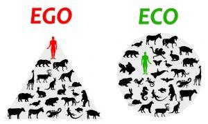 weganizm dla ekologii