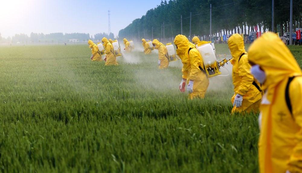 pestycydy w rolnictwie