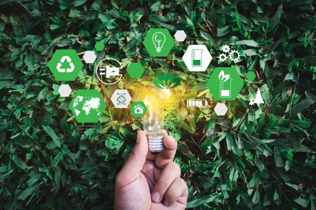 zielona ekonomia