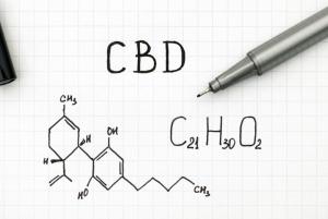 CBD w medycynie