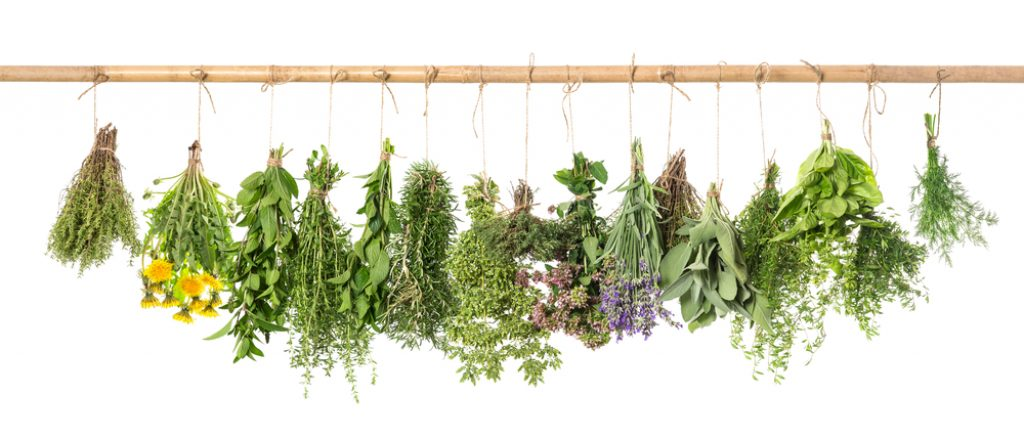 herbs for vaporization
