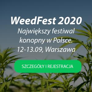 WeedFest-banner1