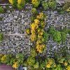 wpływ cmentarzy na środowisko