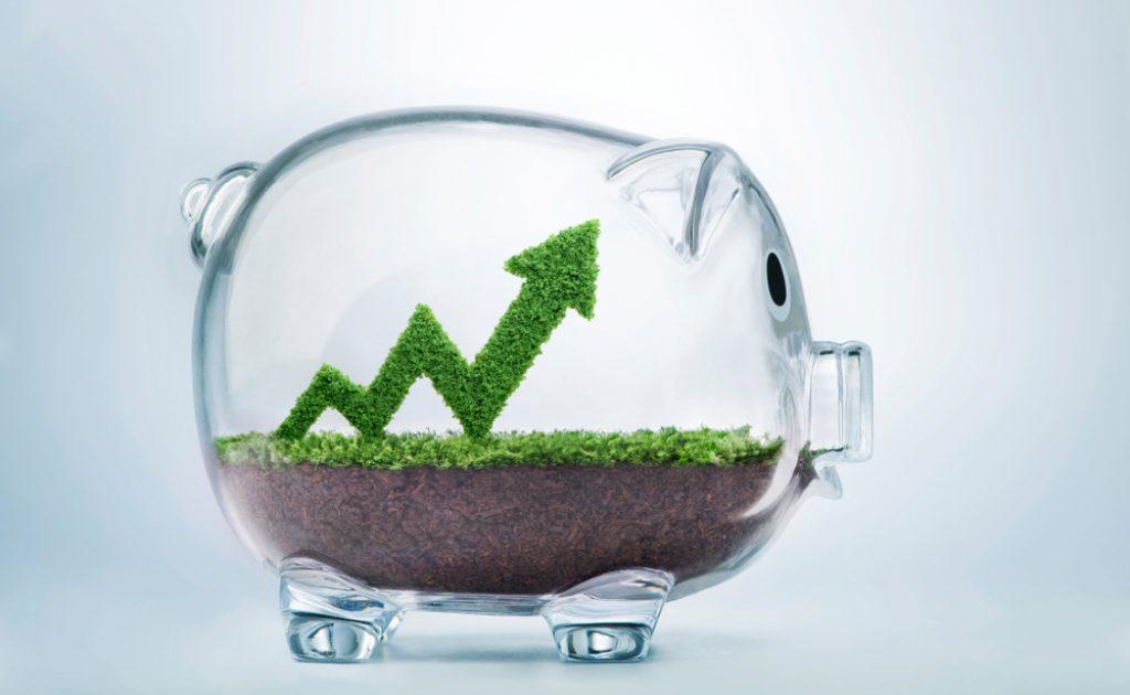 zielony wzrost a postwzrost