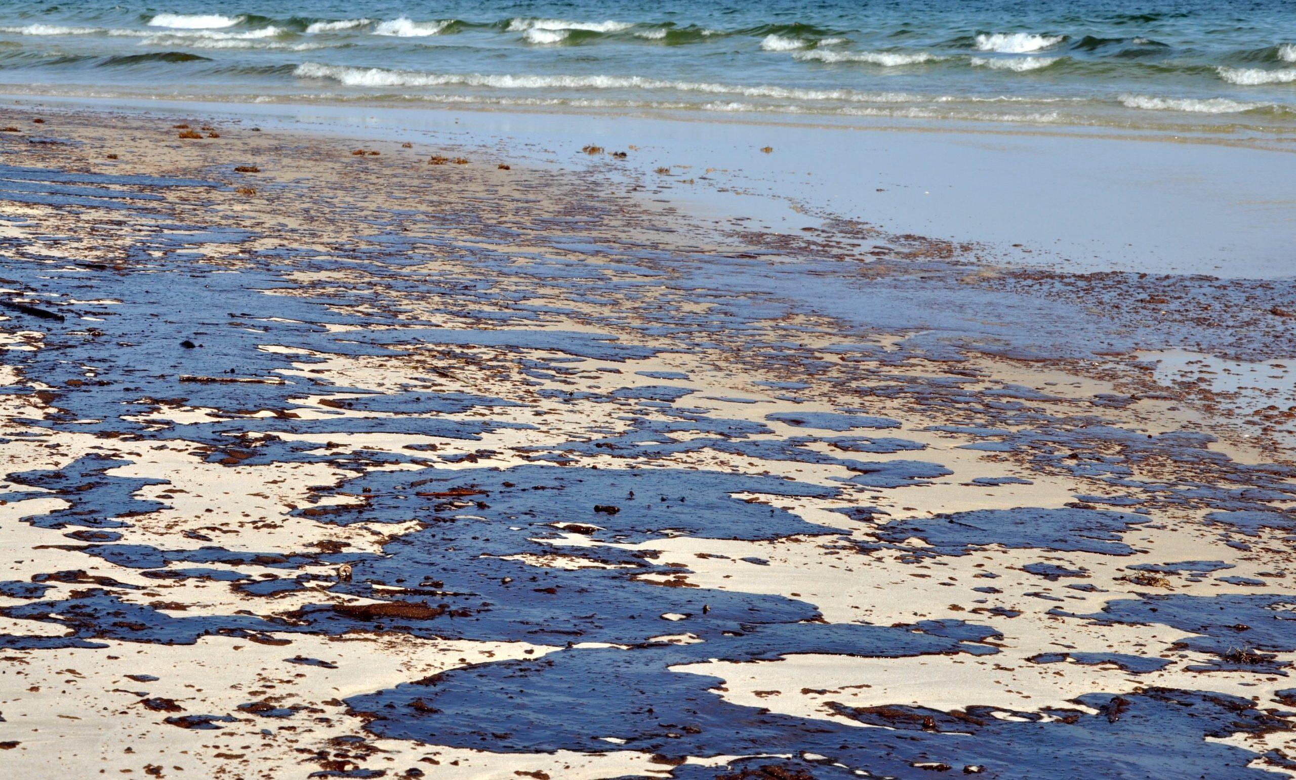 ropa na plaży