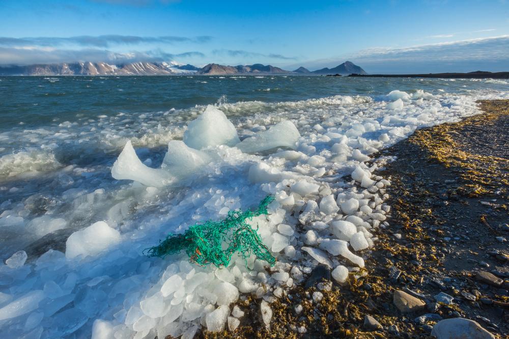 plastik w arktyce